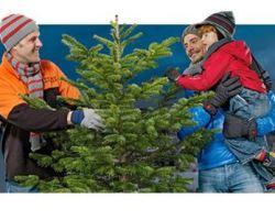 OBI: 10% Weihnachtsbaumaktion