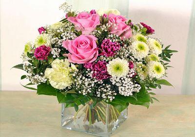 Blume2000.de: Am 25. Mai ist Vatertag!