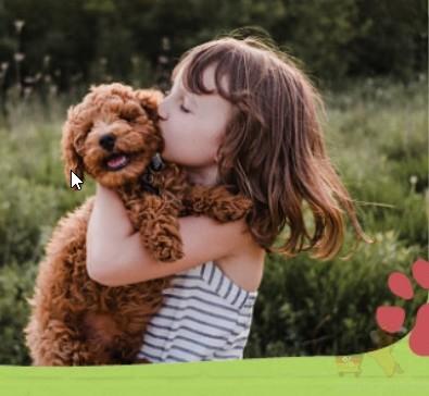 Fressnapf网店大量宠物食物88折,满25欧德国免邮!!