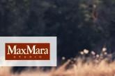 max mara studio高端羊毛羊绒大衣折上8折啦