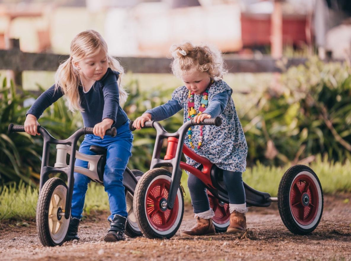 新西兰Wishbone多功能童车让孩子自信的出发